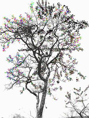 Photograph - Happy Tree by Jesus Nicolas Castanon