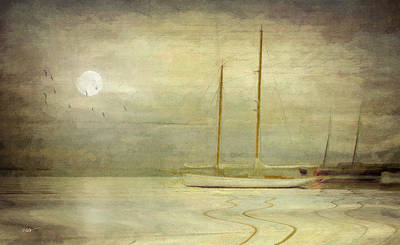 Harbor Moonlight Art Print