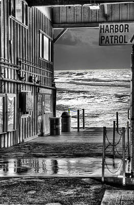 Photograph - Harbor Patrol by Melvin Kearney