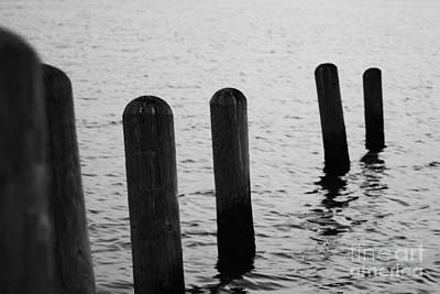 Art Print featuring the photograph Harbor Ties by Tony Cooper