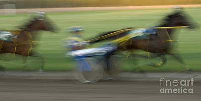 Harness Racing Photograph - Harness Racing 5 by Bob Christopher