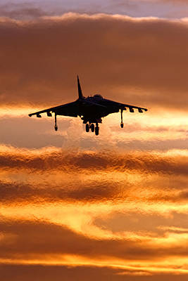 Impressionist Nudes Old Masters - Harrier sunset by Nigel  Blake