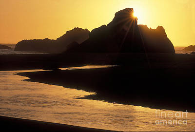 Photograph - Harris Beach Sunset by Sandra Bronstein