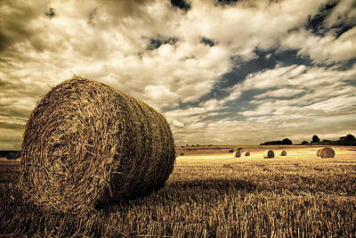 Harvest Time Art Print by Rick Parrott