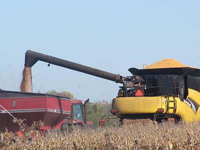 Mick Jagger - Harvesting Corn by Tina M Wenger