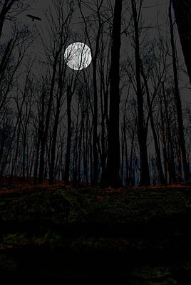 Photograph - Haunted Moon by Emily Stauring