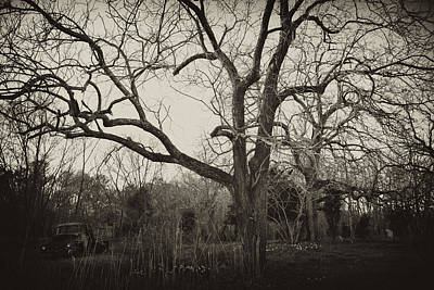 Photograph - Haunting by Kelly Reber