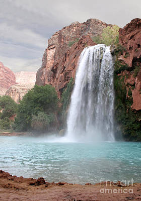 Photograph - Havasu Waterfall by Chris Hill