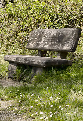 Photograph - Have A Seat by Heather Applegate