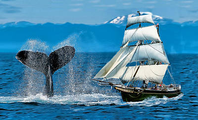 Whale Digital Art - Having A Whale Of A Time by Alex Hardie