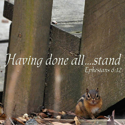 Chipmunk Photograph - Having Done All - Stand  ---  6 Eph 12 by Paul Lyndon Phillips