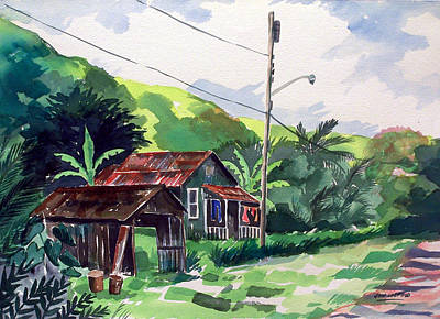 Hawaiian Home Art Print by Jon Shepodd