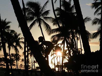 Photograph - Hawaiian Sunset by Dawn Hough Sebaugh