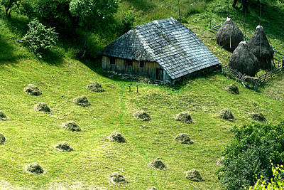 Photograph - Hay And Hut by Emanuel Tanjala