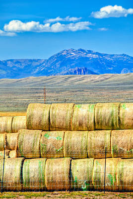 Photograph - Hay Bale Mountain by Harry Strharsky