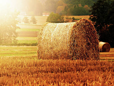 Bale Photograph - Hay Bale by Photographe