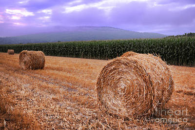 Bale Photograph - Hay Bales At Sunrise by HD Connelly