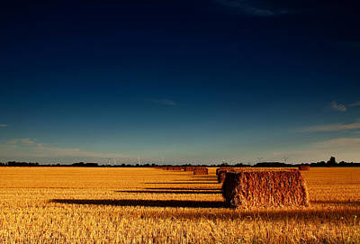 Bale Photograph - Hay Bales by Cale Best