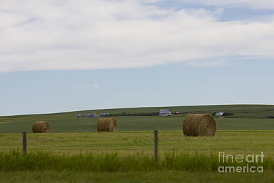 Photograph - Hay Bales by Donna Munro
