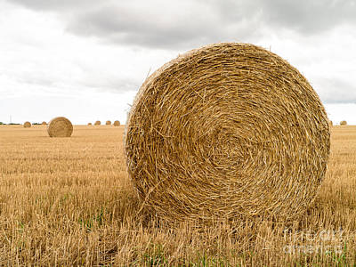 Photograph - Hay Bales by Edward Fielding
