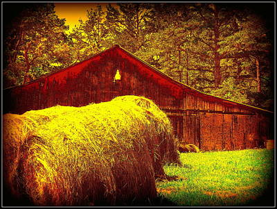 Photograph - Hay Barn by Cindy Wright