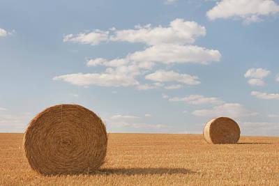 Hay Barrels In Burgundy Region Art Print by Niall Sargent