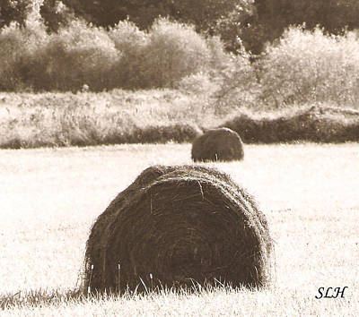 Photograph - Hay Bells In The Evening by Lee Hartsell