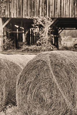 Photograph - Hay Bw by JC Findley