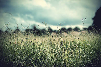 Photograph - Hay Field In July by Ethiriel  Photography