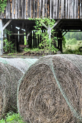 Photograph - Hay by JC Findley