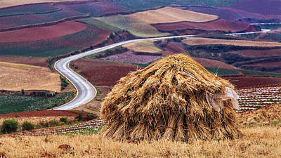 Y120907 Photograph - Hay Pile In Field, Yunnan by William Yu Photography