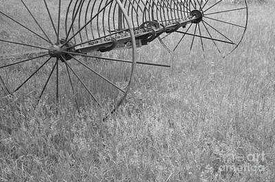 Photograph - Hay Rake  by Wilma  Birdwell