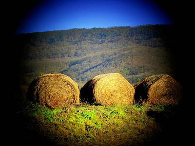 Hay Rolls On Mountain Art Print by Michael L Kimble
