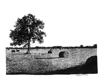 Hayfield Drawing - Hayfield by Gary Gackstatter