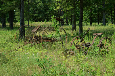 Pastue Photograph - Hayrake And Cutter In The Weeds 2 by Douglas Barnett