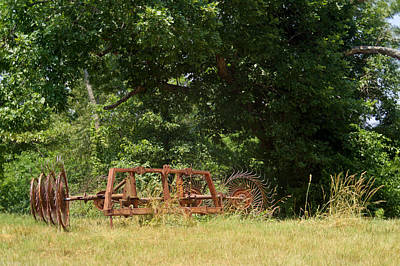 Pastue Photograph - Hayrake Put Out To Pasture 2 by Douglas Barnett