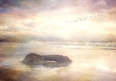 Flock Of Bird Digital Art - Hazy Sunset by Lee-Anne Rafferty-Evans