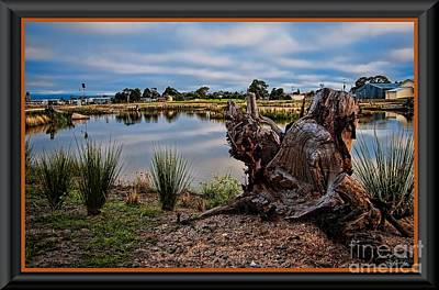 Photograph - Hdr-wetlands by James  Dierker
