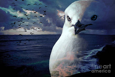 He Spotted Land And Knew He Was Home Art Print by Karen Lewis