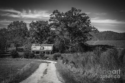 Photograph - Heading To The Barn by David Waldrop