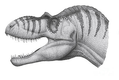 Headshot Digital Art - Headshot Of An Albertosaurus by Heraldo Mussolini
