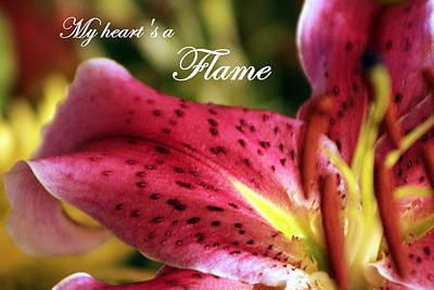 Photograph - Heart's A Flame by Deborah  Crew-Johnson