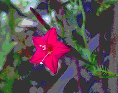 Impressionist Style Photograph - Heavy With Pollen by Padre Art