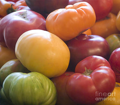 Photograph - Heirloom Tomatoes by Jim And Emily Bush