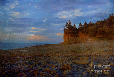 Photograph - Henri's Beach by Bob Senesac