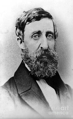 Henry David Thoreau, American Author Art Print