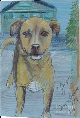 Mutt Drawing - Here Boy by Jamey Balester
