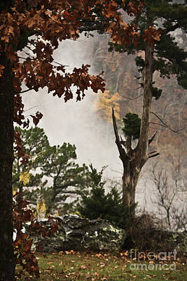 Photograph - Here Comes The Fog by Kim Henderson