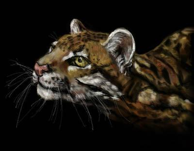 Here Kitty Kitty Art Print by Lakota Phillips