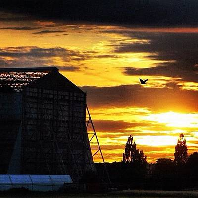 Nature_shooters Photograph - Heron And The Hanger #thebestshooter by Chris Barber